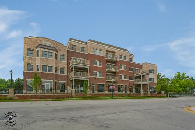 17200 S Oak Park Avenue #201, Tinley Park, IL 60477 (MLS #10055081) :: Littlefield Group