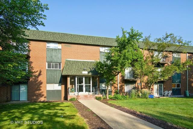 1451 W Irving Park Road 216A, Itasca, IL 60143 (MLS #10055099) :: The Jacobs Group