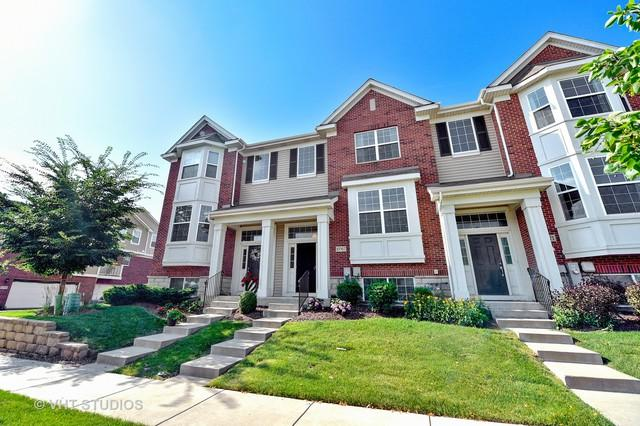 10567 154th Place, Orland Park, IL 60467 (MLS #10055101) :: Domain Realty