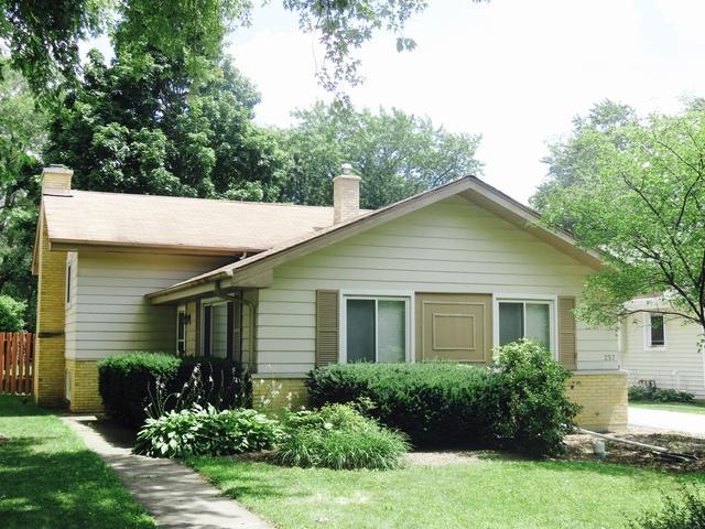 257 S Milton Avenue, Glen Ellyn, IL 60137 (MLS #10055104) :: The Wexler Group at Keller Williams Preferred Realty