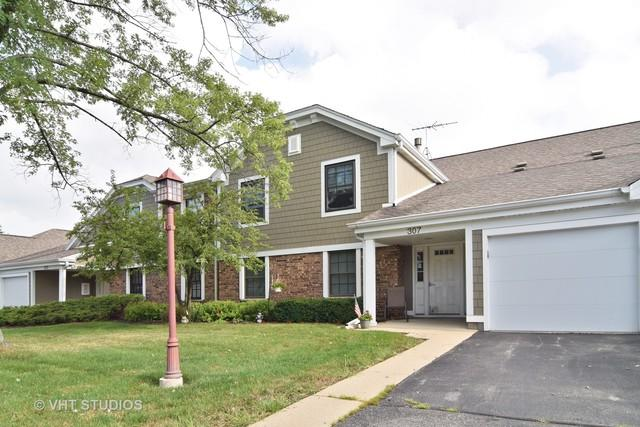 307 Wildberry Court D1, Schaumburg, IL 60193 (MLS #10055319) :: The Jacobs Group