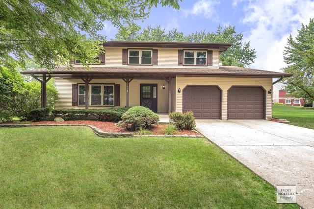 649 Feather Sound Drive, Bolingbrook, IL 60440 (MLS #10055369) :: Littlefield Group
