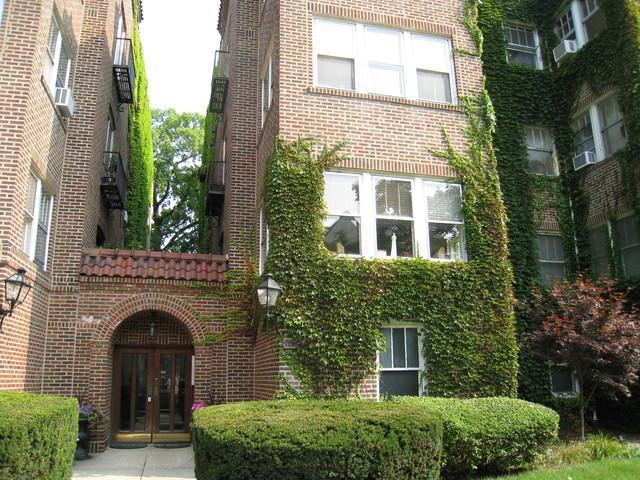 719 Emerson Street 1E, Evanston, IL 60201 (MLS #10055426) :: Littlefield Group