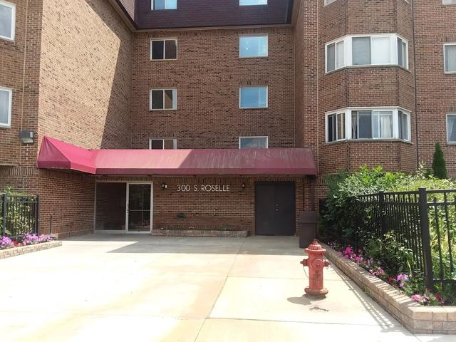 300 S Roselle Road #110, Schaumburg, IL 60193 (MLS #10055464) :: The Jacobs Group