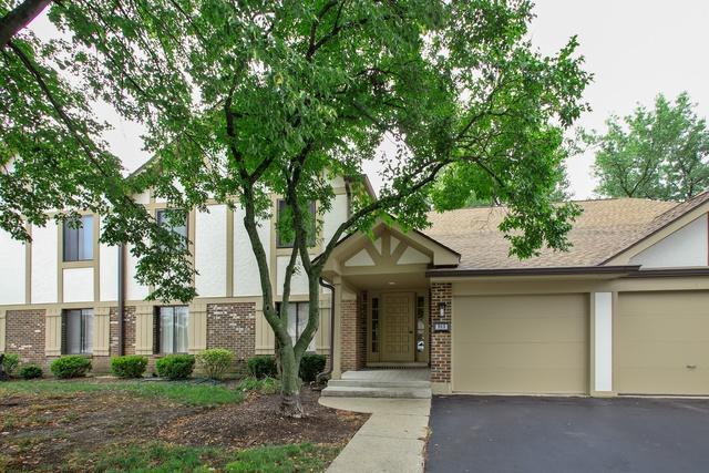 913 Knottingham Drive 2BR, Schaumburg, IL 60193 (MLS #10056083) :: The Jacobs Group