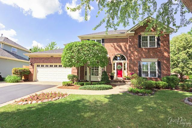 141 Partridge Court, Grayslake, IL 60030 (MLS #10056094) :: The Jacobs Group