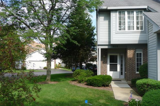 509 W Parkside Drive, Palatine, IL 60067 (MLS #10056101) :: The Jacobs Group