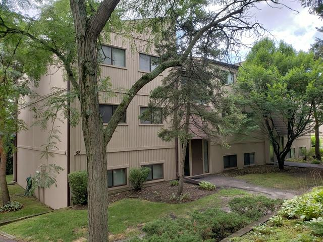 52 Oak Hill Colony #9, Fox Lake, IL 60020 (MLS #10056503) :: The Jacobs Group
