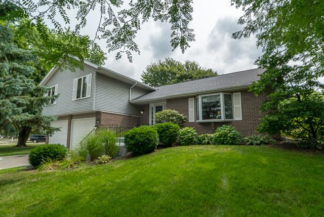 25317 W Willow Drive, Plainfield, IL 60544 (MLS #10056668) :: Domain Realty