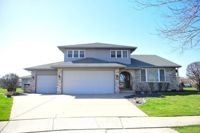 9851 Derby Court, Mokena, IL 60448 (MLS #10056684) :: The Jacobs Group