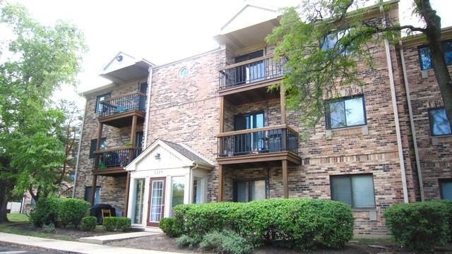 2229 Nichols Road F, Arlington Heights, IL 60004 (MLS #10056762) :: The Schwabe Group