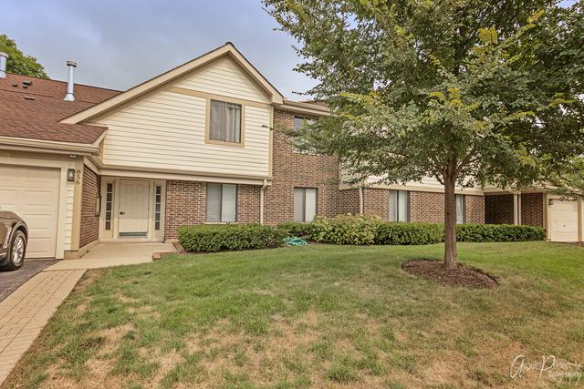 856 E Coach Road #17241, Palatine, IL 60074 (MLS #10056843) :: The Schwabe Group