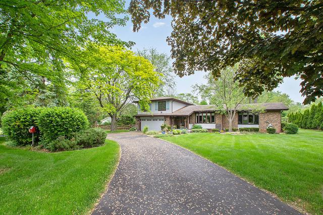13929 Will Cook Road, Orland Park, IL 60467 (MLS #10056928) :: The Jacobs Group