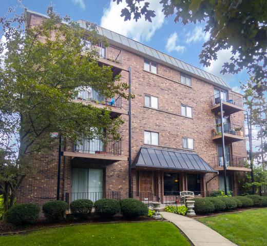2218 N Newland Avenue #306, Chicago, IL 60707 (MLS #10056962) :: The Jacobs Group
