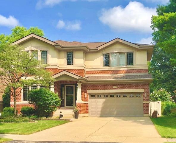 625 Riverside Drive, Park Ridge, IL 60068 (MLS #10057113) :: The Jacobs Group