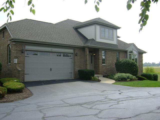 14738 Aster Lane #14738, Homer Glen, IL 60491 (MLS #10057316) :: Baz Realty Network | Keller Williams Preferred Realty
