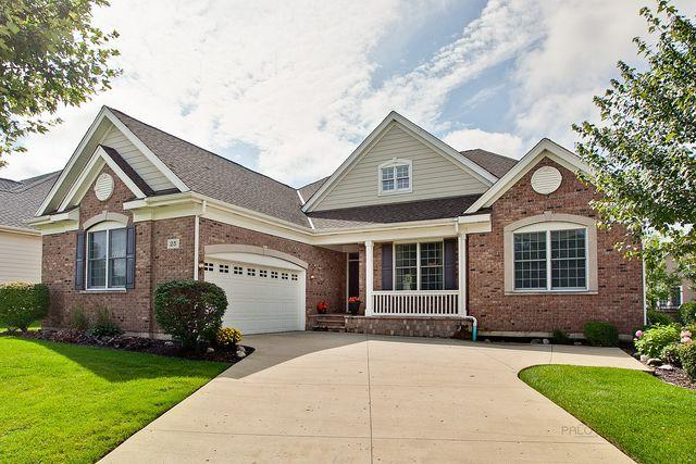 25 Chaco Court, South Barrington, IL 60010 (MLS #10057490) :: The Schwabe Group