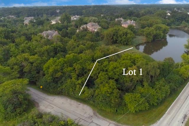3702 Deerwood Drive, Long Grove, IL 60047 (MLS #10057739) :: The Schwabe Group