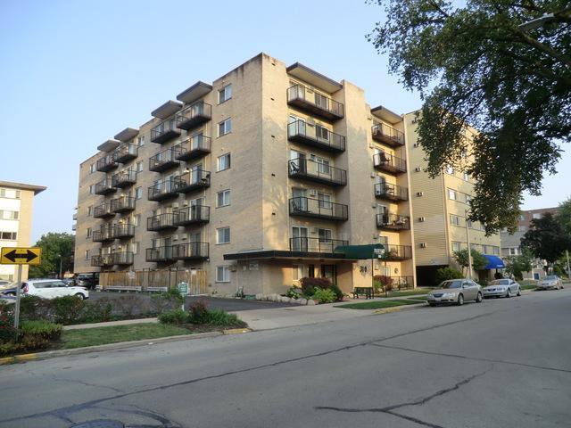 310 Lathrop Avenue #211, Forest Park, IL 60130 (MLS #10057882) :: The Jacobs Group