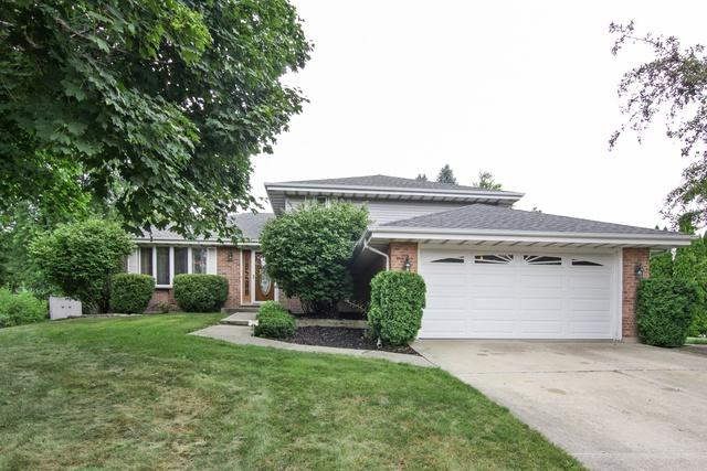 25014 W Homestead Court, Plainfield, IL 60544 (MLS #10057990) :: The Jacobs Group