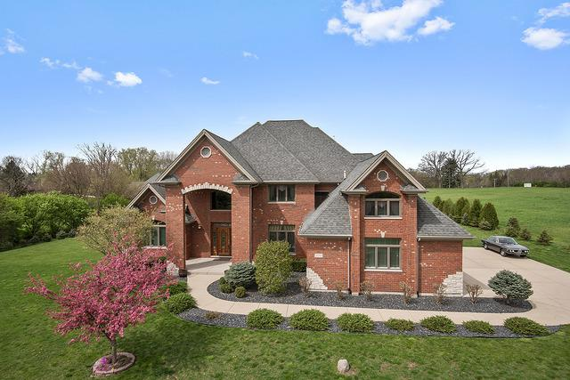 14344 Dixon Lane, Homer Glen, IL 60491 (MLS #10058574) :: The Jacobs Group