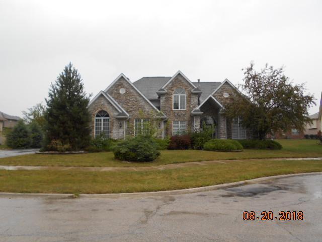4532 Columbine Lane, Matteson, IL 60443 (MLS #10058740) :: The Jacobs Group