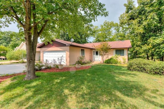 106 Cayuga Lane, Loda, IL 60948 (MLS #10059170) :: Ryan Dallas Real Estate