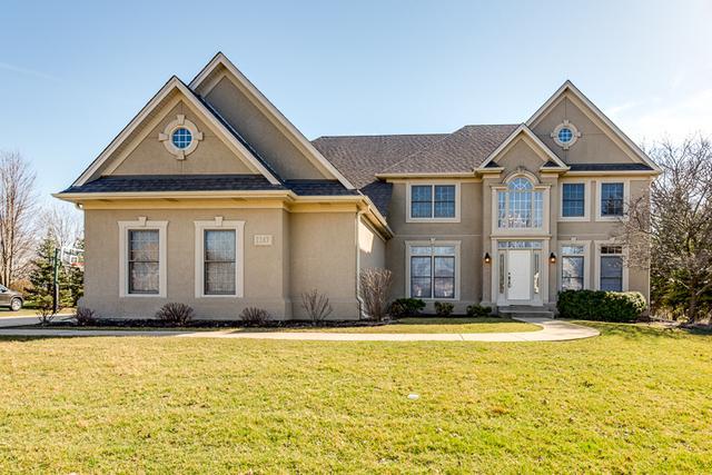 1167 Litchfield Lane, Bartlett, IL 60103 (MLS #10060395) :: Baz Realty Network | Keller Williams Preferred Realty