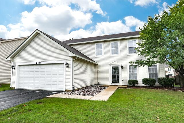 2541 Smithfield Lane, Aurora, IL 60504 (MLS #10062088) :: The Dena Furlow Team - Keller Williams Realty