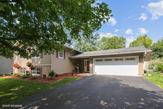 6110 Green Drive, Woodridge, IL 60517 (MLS #10065207) :: The Jacobs Group