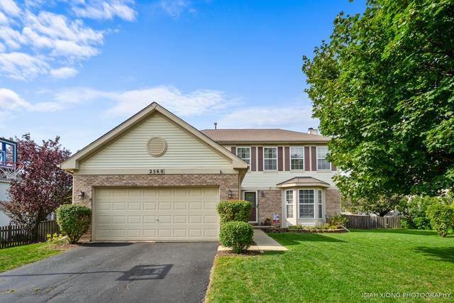 2560 Smithfield Lane, Aurora, IL 60503 (MLS #10065213) :: The Dena Furlow Team - Keller Williams Realty
