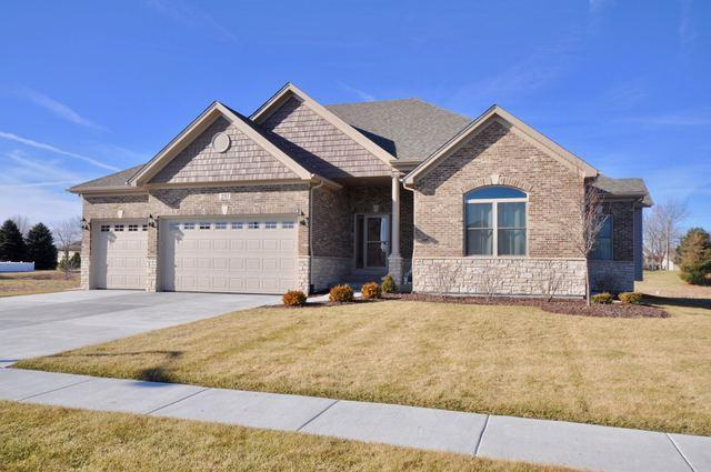 391 Andover Drive, Oswego, IL 60543 (MLS #10065266) :: The Wexler Group at Keller Williams Preferred Realty