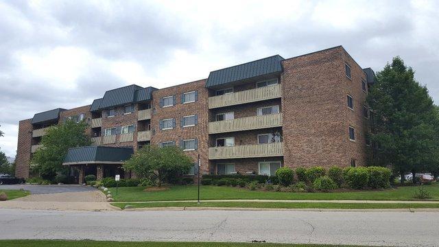 700 Perrie Drive #311, Elk Grove Village, IL 60007 (MLS #10067453) :: Baz Realty Network | Keller Williams Preferred Realty