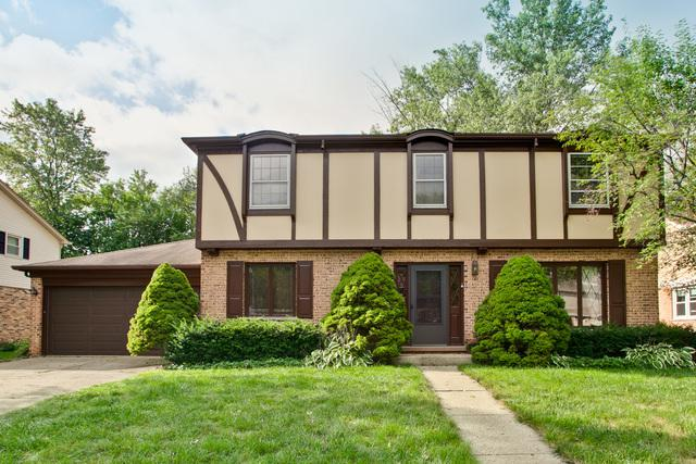 437 E Pebble Creek Road, Palatine, IL 60074 (MLS #10068242) :: Lewke Partners