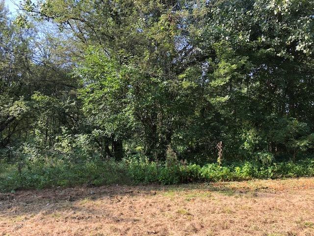 21535 W Engle Drive, Lake Villa, IL 60046 (MLS #10068316) :: Century 21 Affiliated