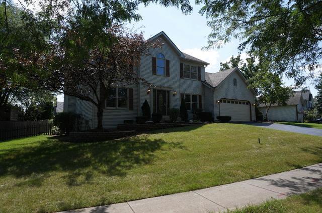 593 Lavina Drive, Bolingbrook, IL 60440 (MLS #10069420) :: Baz Realty Network | Keller Williams Preferred Realty