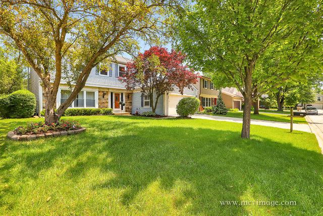 209 Crabtree Lane, Vernon Hills, IL 60061 (MLS #10070136) :: Lewke Partners