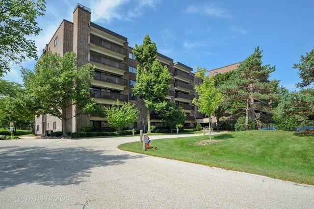 920 Vose Drive #406, Gurnee, IL 60031 (MLS #10070178) :: Ani Real Estate