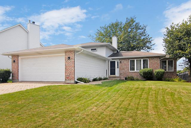 471 E Barberry Circle, Yorkville, IL 60560 (MLS #10070296) :: The Dena Furlow Team - Keller Williams Realty