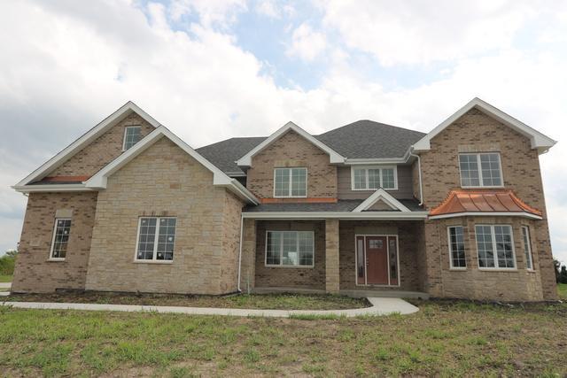 8581 Pine Ridge Drive, Frankfort, IL 60423 (MLS #10071007) :: Lewke Partners