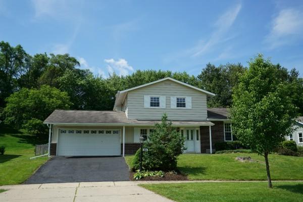 855 Park Lane, Hoffman Estates, IL 60192 (MLS #10072797) :: The Jacobs Group