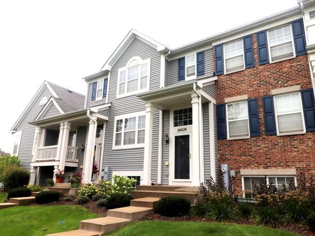 24624 George Washington Drive, Plainfield, IL 60544 (MLS #10073484) :: Ani Real Estate