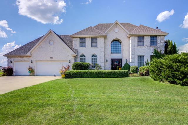 17417 S Honora Drive, Plainfield, IL 60586 (MLS #10074626) :: The Jacobs Group