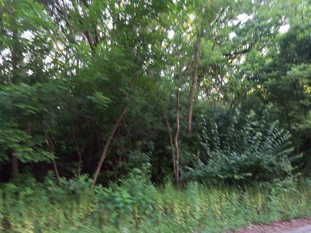 12 Autumn Trail - Photo 1