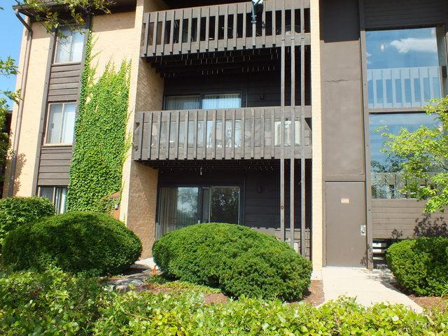 6108 Knoll Valley Drive #108, Willowbrook, IL 60527 (MLS #10077023) :: Lewke Partners