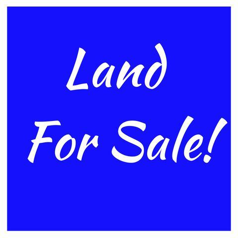25062 S Doolittle Drive, Monee, IL 60449 (MLS #10077490) :: Lewke Partners