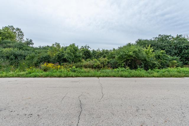 0 Magnolia Avenue, Gurnee, IL 60031 (MLS #10078872) :: Century 21 Affiliated