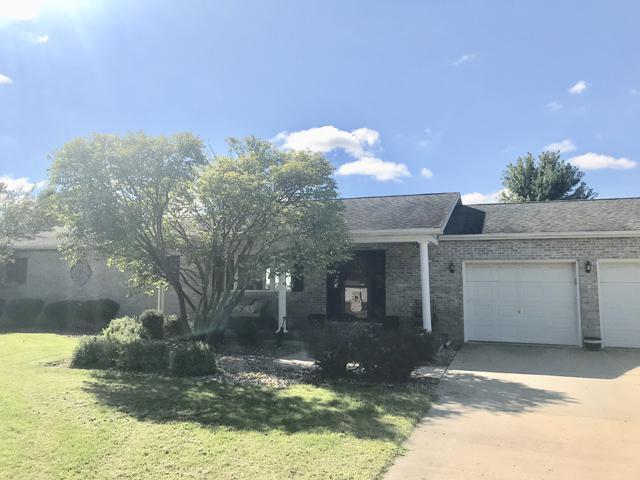 905 E Cleveland Street, Ladd, IL 61329 (MLS #10079005) :: Ani Real Estate