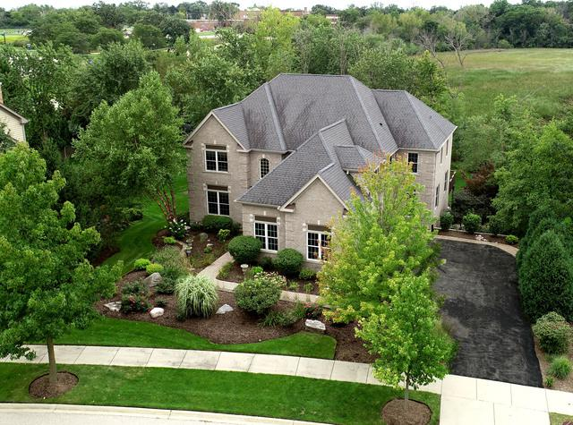 267 Clair View Court, Lake Zurich, IL 60047 (MLS #10079695) :: Baz Realty Network   Keller Williams Preferred Realty