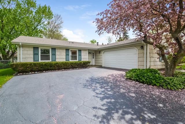 230 Ridgewood Court, Lake Zurich, IL 60047 (MLS #10080558) :: Helen Oliveri Real Estate